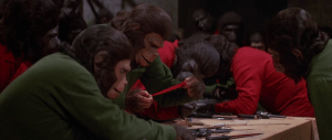The apes plot and collect sharp objects