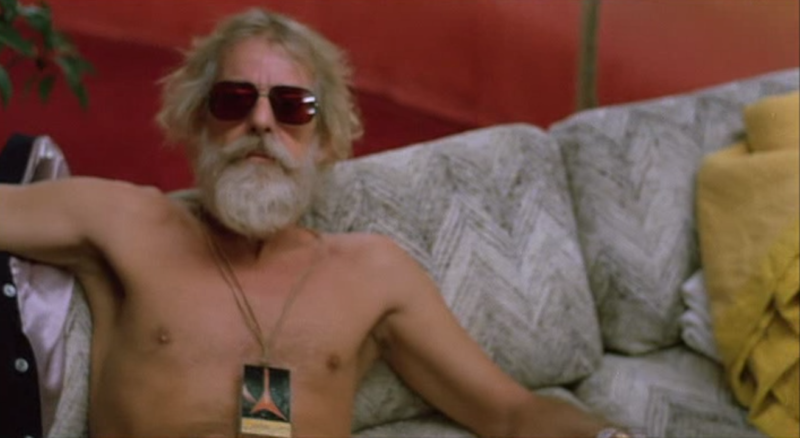 Let's Spend the Night Together Rolling Stones movie Hal Ashby
