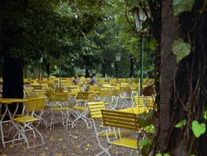 Lost in a sea of yellow